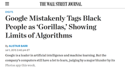 """Google Mistakenly Tags Black People as Gorillas"""