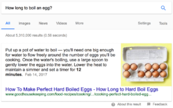 Google Snippet: How to boil an egg